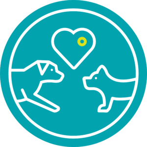 Doggy Day Care Safety Plan Icon